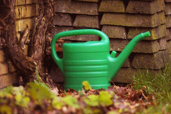 Trädgårdsskötsel, bevattning, krattning och gödsling